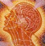 quantum thought