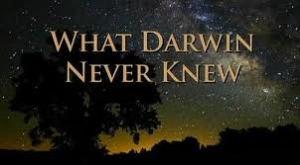 Darwin never knew