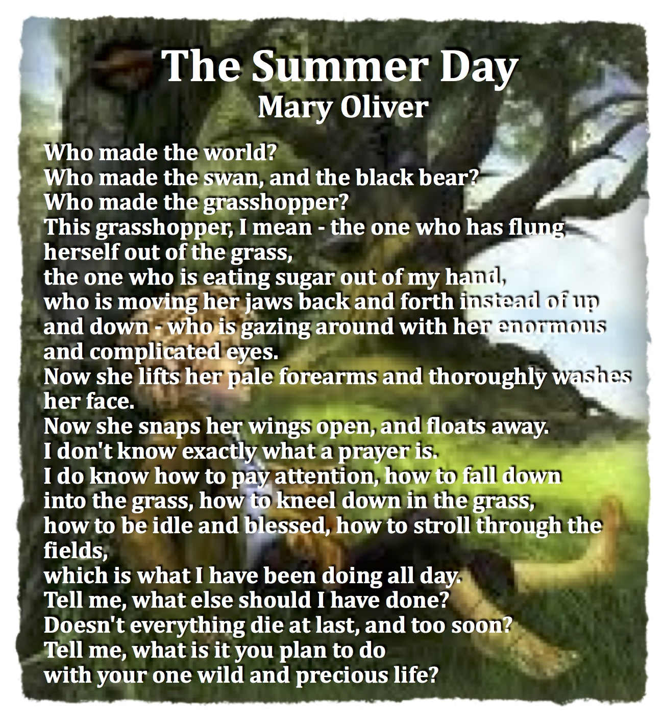 the summer day The summer solstice is the longest day of the year in the northern hemisphere is in june, while in the southern hemisphere it's in december dates and local times for equinox and solstices worldwide.